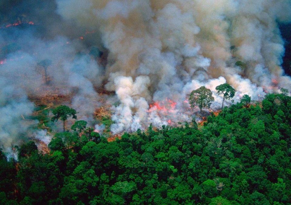 Un important incendie ravage la forêt amazonienne , août 2019