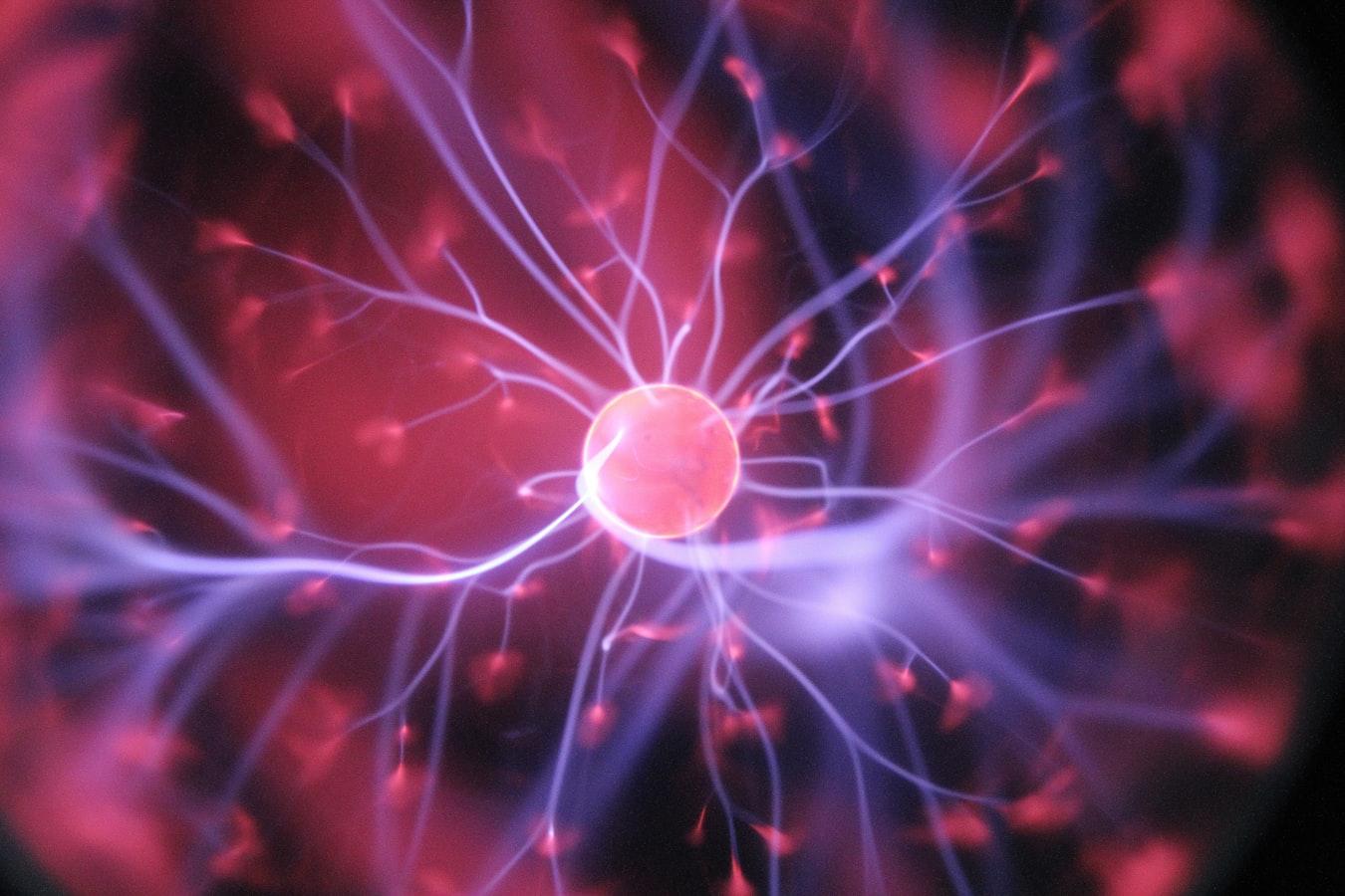 Des réseaux neuronaux dans un cerveau humain.